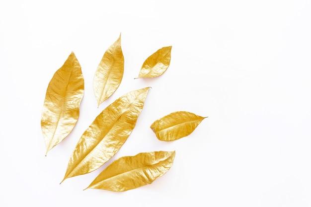 Gouden droge bladeren die op witte achtergrond worden geïsoleerd