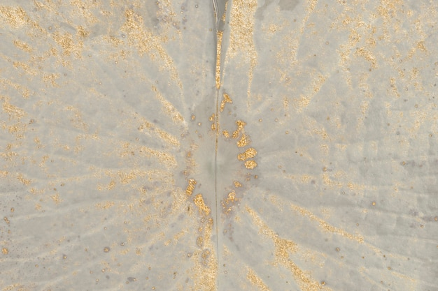 Gouden glitter op de macro-achtergrond van het waterlelieblad
