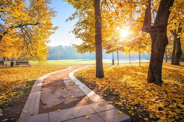 Gouden herfstbomen van tsaritsyno-park in moskou en de bocht van de steeg op een vroege zonnige ochtend