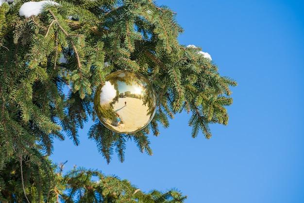 Gouden kerstbal op een groene dennenboomtak op blauwe hemelachtergrond, close-up