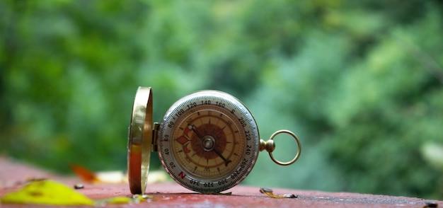 Gouden kompas ligt op de achtergrond van het bos
