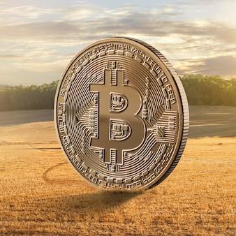 Gouden munten bitcoin tegen veld. het concept van digitale moderne agribusiness