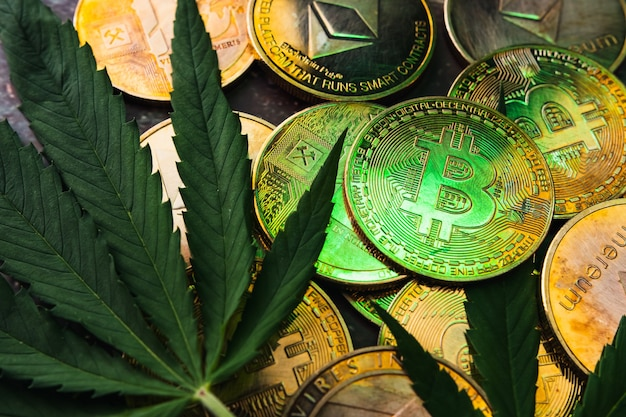 Gouden munten met cryptovalutasymbool en cannabisbladeren.