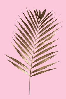 Gouden palmbladeren geplaatst op roze pastelachtergrond