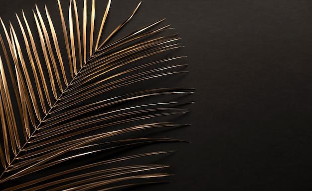 Gouden palmtak geïsoleerd op zwart