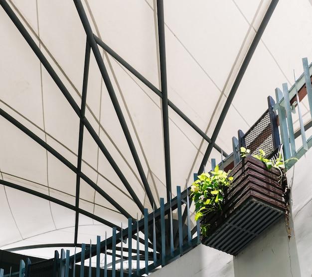 Gouden pothos of devil's ivy in de hangende houten manddecoratie in een gebouw