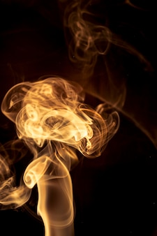 Gouden rook op zwarte achtergrond.