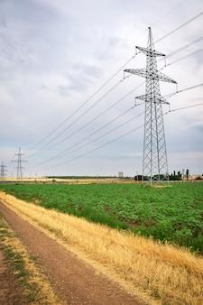 Gouden tarweveld en blauwe hemel. hoogspannings elektrische transmissie pyloon silhouet toren.