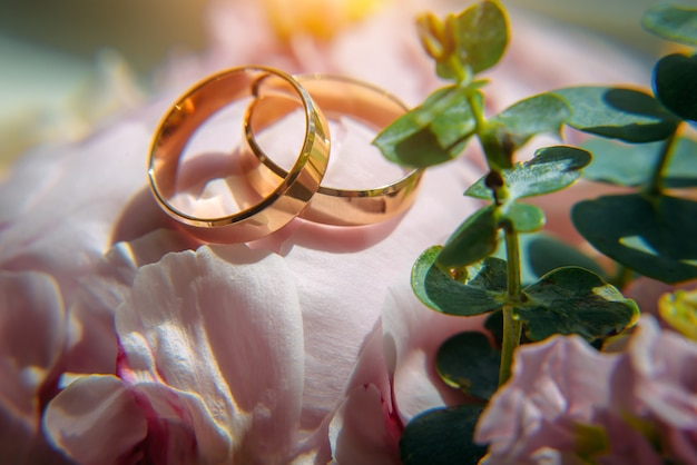 Gouden trouwringen en delicate roze bloemen, selectieve aandacht, close-up. huwelijksfoto met exemplaarruimte.
