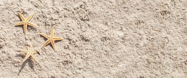 Gouden zeester op het zand. bovenaanzicht, plat gelegd. banier.