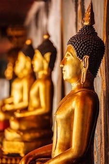 Gouden zittende boeddhabeelden in thailand