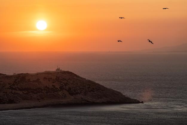 Gouden zonsondergang over kustlandschap en vliegende vogels