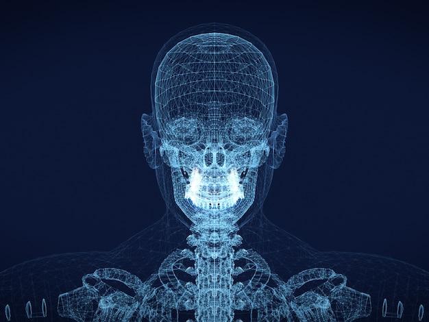 Grafische draadframe afbeelding van menselijke schedel