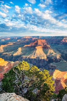 Grand canyon met ochtendlicht, vs.