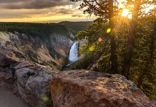 Grand canyon van het nationaal park yellowstone