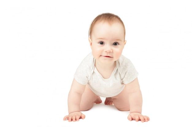 Grappig kruipend babymeisje dat op witte achtergrond wordt geïsoleerd