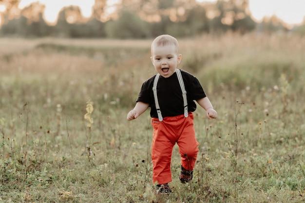 Grappig weinig babyjongen die op de zomergras lopen op gebied