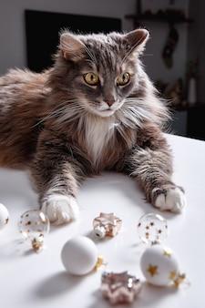 Grappige grijze kat speelt met kerststuk speelgoed