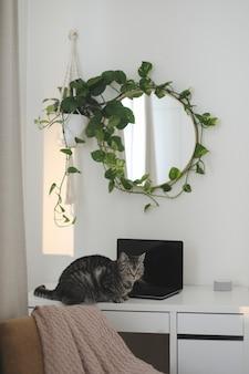 Grappige kat en stijlvolle interieurdetails van de werkplek met een laptop op tafel en een ronde spiegel...
