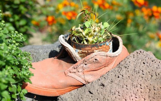 Grappige tuindecoratie bloempot gemaakt van oude schoen en ijzeren kan