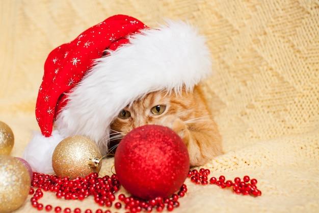 Grappige vette gember kat in kerstman kerstmuts ligt op een gele deken omgeven door new year's