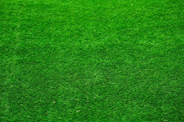 Gras achtergrond