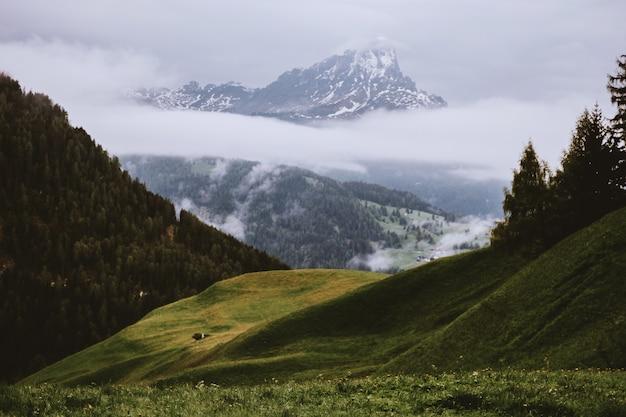 Gras bedekte heuvel