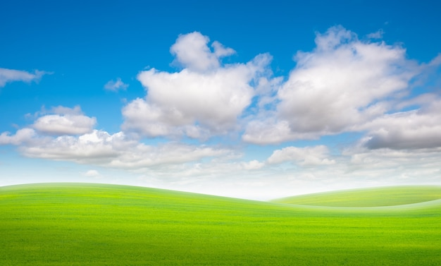 Grasveld en blauwe hemel met wolken