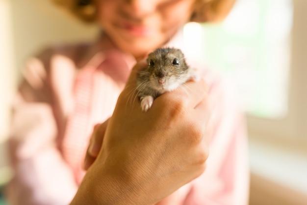 Gray dzungarian-hamster in handen van zijn kleine eigenaar