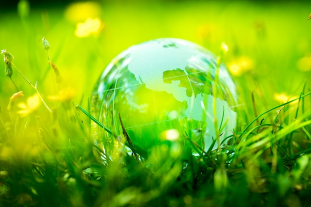 Green & eco-omgeving, glazen bol in de tuin