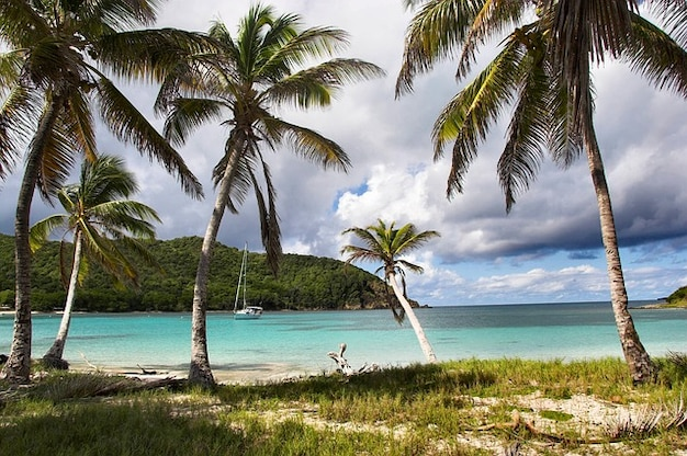 Grenadines verankering caribbean