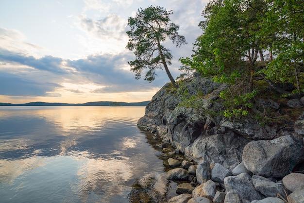 Grenen aan de rand van de schilderachtige kust van het eiland aan het meer