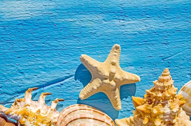 Grens met zeeschelpen