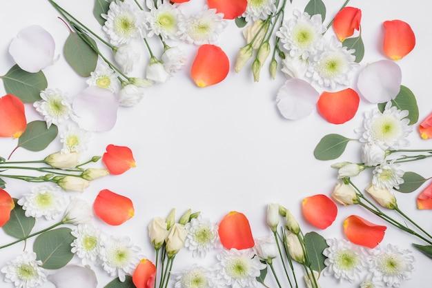 Grens van mooie bloemen en bloembladen