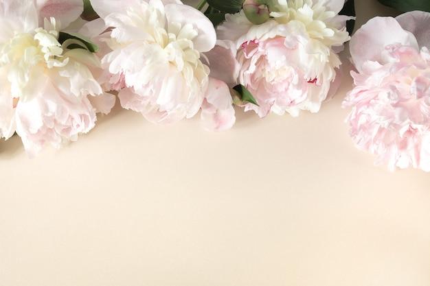 Grenskader van roze en beige pioen toppen, takken en bladeren op lichte papieren achtergrond. frame van bloemen voor het ontwerpen van wenskaarten met als thema bruiloft, moederdag, verjaardag en andere groeten