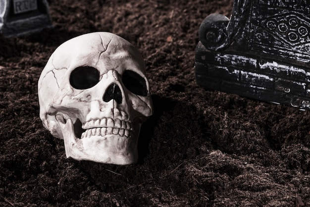 Griezelige menselijke schedel op begraafplaats op halloween-nacht Gratis Foto