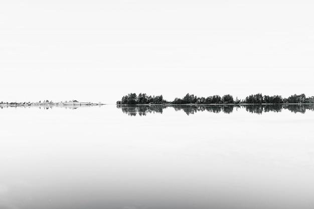Grijsschaal schieten van een reeks bomen weerspiegelen in het water