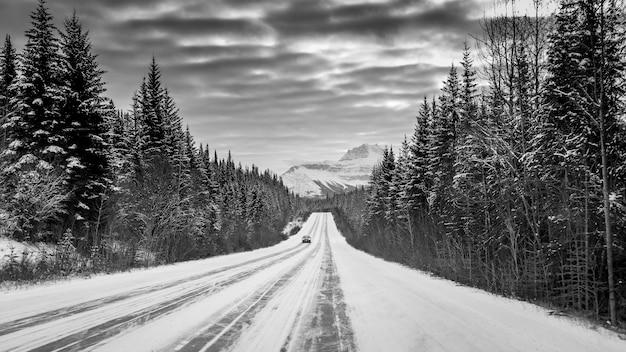 Grijsschaal shot van een auto op een snelweg in het midden van een bos, omringd door besneeuwde bergen