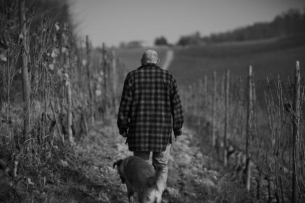 Grijswaardenfoto van een mannetje met een hond die overdag door een pad in een veld loopt