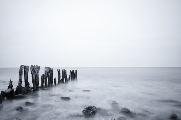 Grijswaardenopname van een prachtig zeegezicht onder een bewolkte hemel in ostsee, duitsland