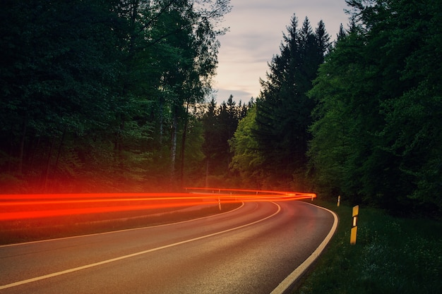 Grijze asfaltweg tussen groene bomen overdag met rode bewegingslichten