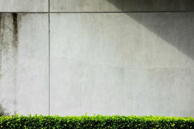 Grijze betonnen muur met schaduw van gebouw