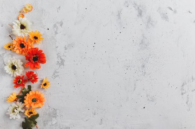 Grijze betonnen platliggende achtergrond met kleurrijke herfstbloemhoofdjes