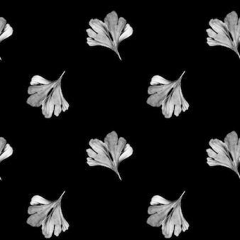 Grijze bladeren van gingko biloba op zwarte achtergrond