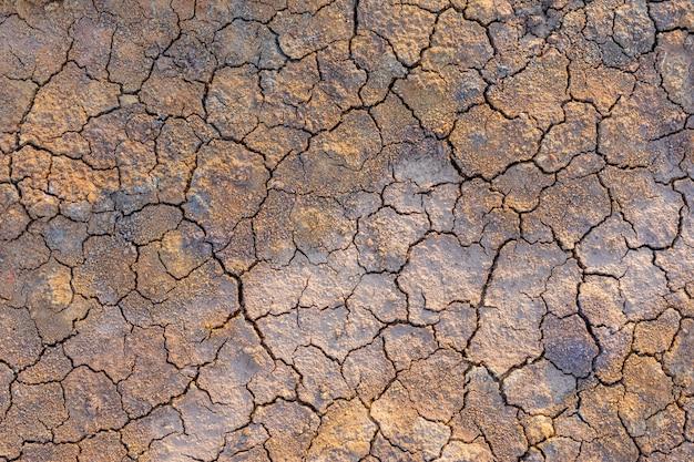 Grijze droge grond