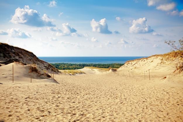 Grijze duinen aan het koerse spit in litouwen