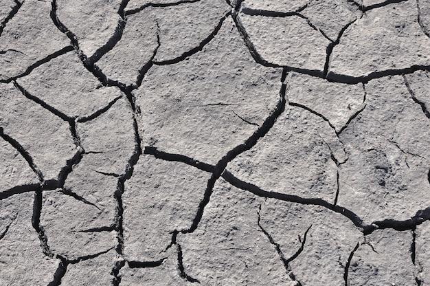 Grijze gebarsten grond