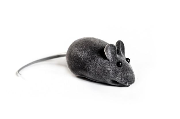 Grijze huisdier speelgoed muis