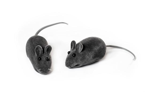 Grijze huisdier speelgoed muizen