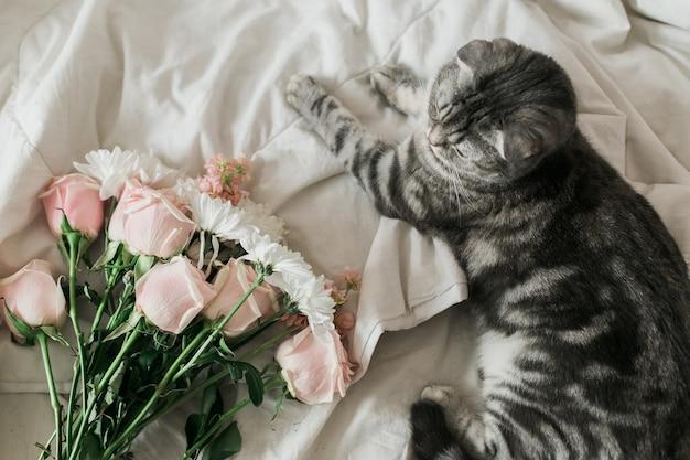 Grijze kat met een boeket van roze rozen bovenaanzicht op het bed